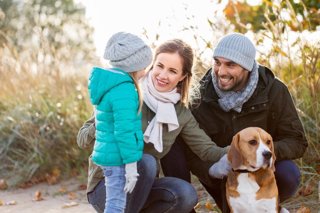 Ein Hund in der Familie – Tipps rund um das vierbeinige Familienmitglied